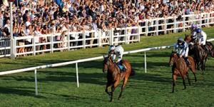 lingfield-races