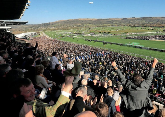 Image result for cheltenham roar